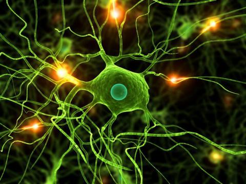 Рассеянный склероз — атака по болезни. Часть 1