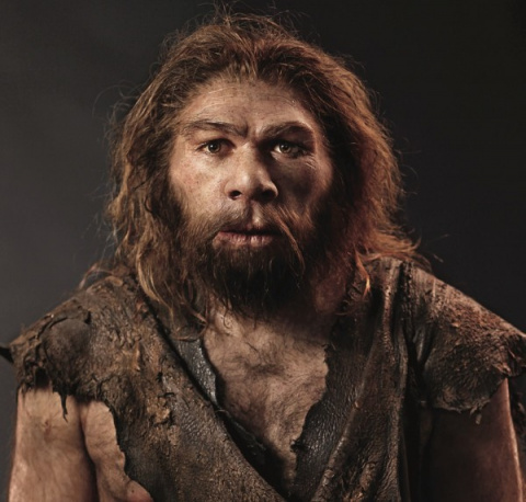 Рацион неандертальцев на 20%…