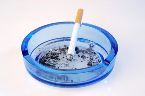 Названы четыре продукта для восстановления легких курильщика