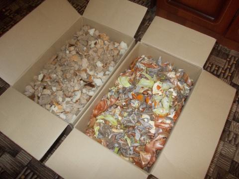 Корм для грядок. Удобрение из пищевых отходов понравится огурцам