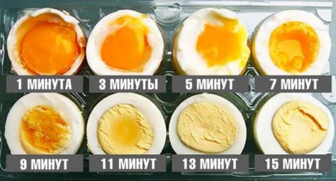 Варим яйца правильно: идеаль…
