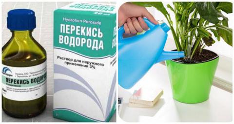 Перекись водорода для домашн…