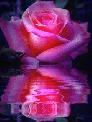 Роза Сагидуллина