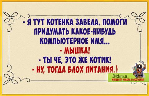 Сплошной позитив в анекдотах))