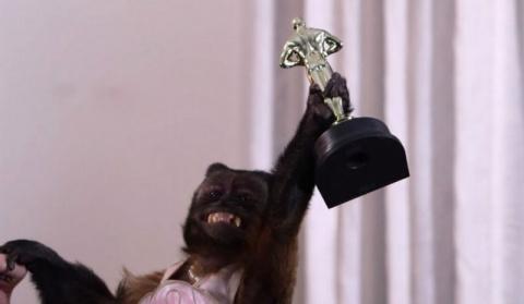 20-летнюю обезьяну наградили за вклад в кинематограф