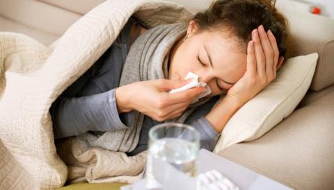В Карелию идет свиной грипп. Как не заболеть и как выздороветь