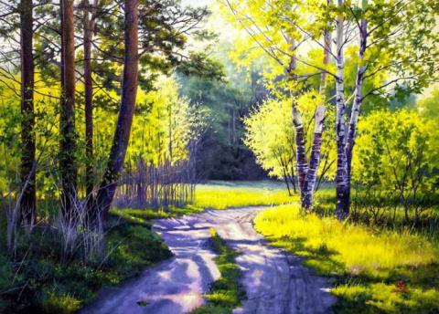Лесные пейзажи Влада Сафронова