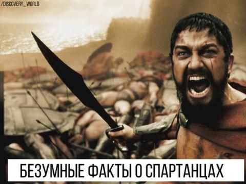 Это Спартааа! Безумные факты о спартанцах