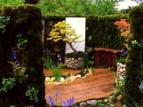 Идеи оформления заднего дворика