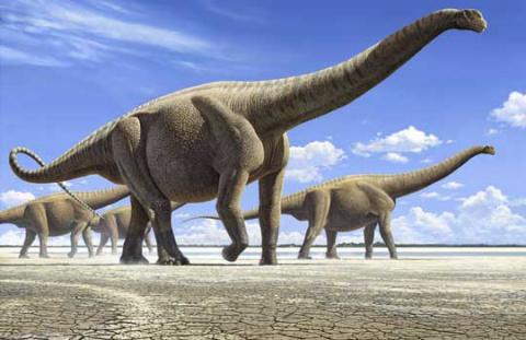 Земле не хватает навоза динозавров