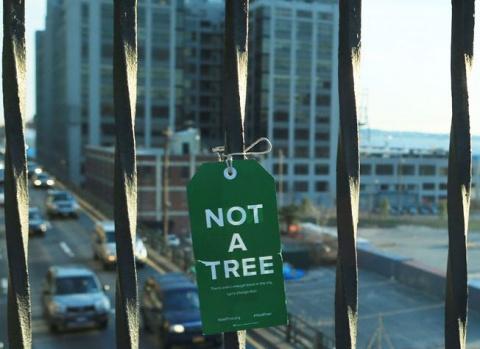 Это – не дерево