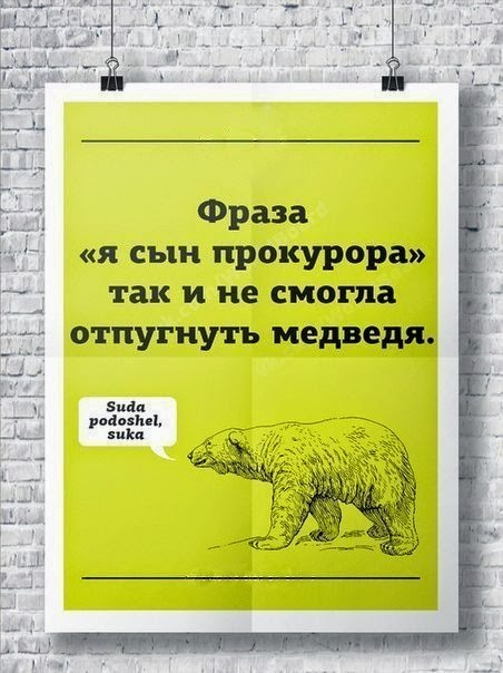 Чем медведя не напугать?