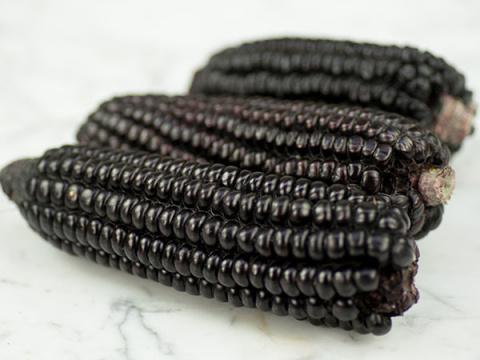 Черная кукуруза инков