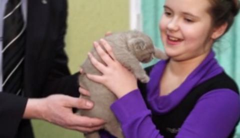Путин подарил дорогого котенка школьнице из Мурманской области