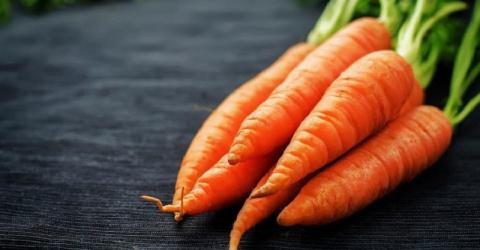 Вся польза морковной ботвы