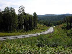 Власти Кузбасса готовы бесплатно раздать желающим заниматься сельским хозяйством 94 тыс. га земель