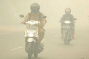 Из-за пожаров в Индонезии и …
