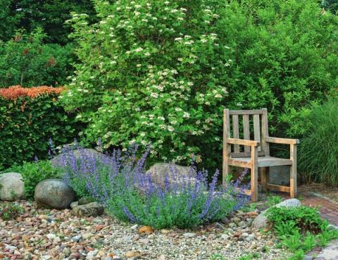 Гравийный сад, или 50 оттенков серого