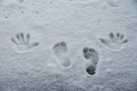 Как ходить по снегу? Секреты и уроки
