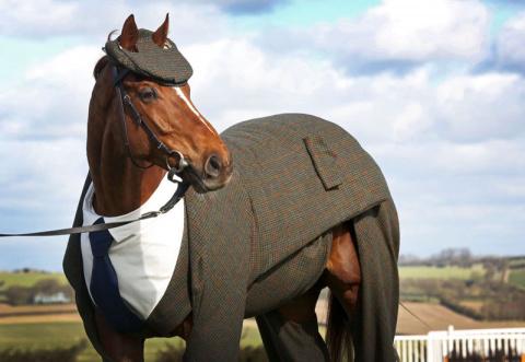 Первый в мире костюм-тройка для коня
