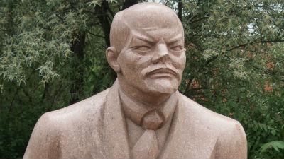 В Биробиджане коммунист обез…