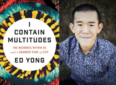 Эд Йонг  «Я вмещаю множества: микробы внутри нас и грандиозный взгляд на жизнь». Фрагмент.