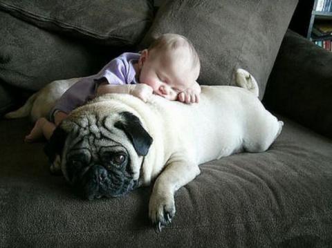 Спят усталые детишки... двойной позитив