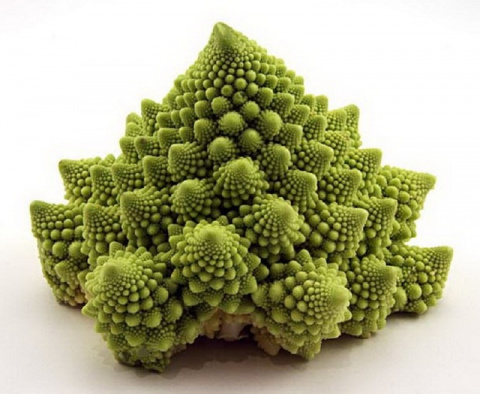 Капуста романеско: овощ как произведение искусства