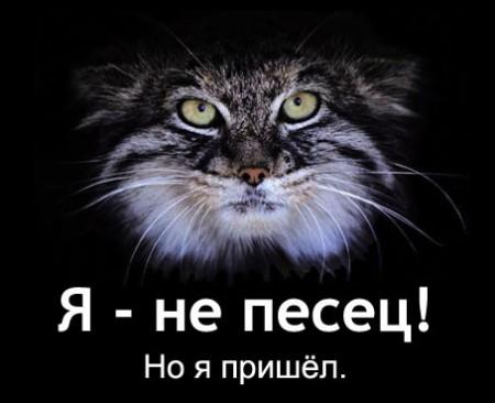 http://mtdata.ru/u23/photo3D07/20449118215-0/big.jpeg