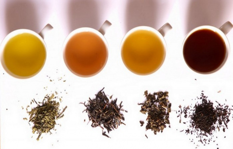 20 любопытно-забавных фактов о чае, которые стоило бы знать