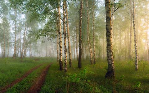 Пейзажи невероятной красоты от Дмитрия Алексеева