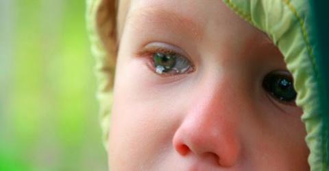 Поколение агрессивных родите…