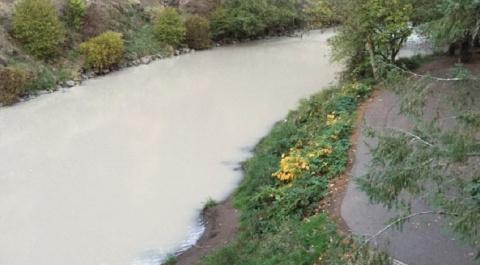 Река Калама возле вулкана Сент-Хеленс побелела