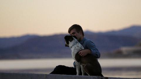 Собаки спасают преступников