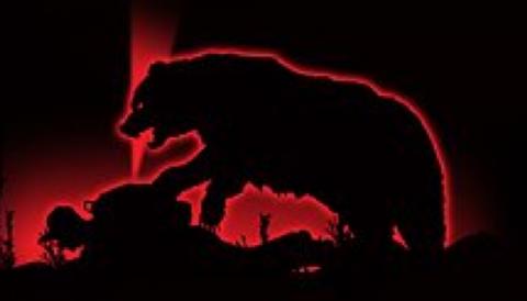 Не бойтесь повернуться к медведю спиной