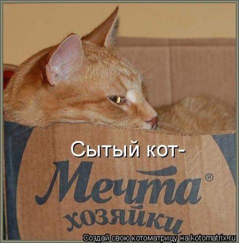 2 истории про котЭ или мужск…