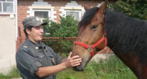 На Урале школьница выкупила полицейского коня, списанного на убой