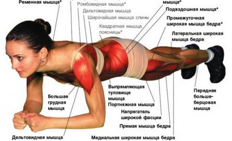 Чудеса, которые планка сотворит с Вашим телом