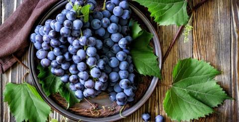 Как получить хороший урожай винограда