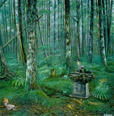 Загадочный лес желаний