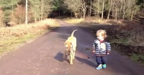 Малыш выгуливает собаку и тут… лужа!