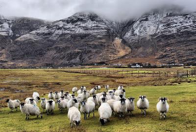 Волшебная Шотландия в разные времена года 22 фото