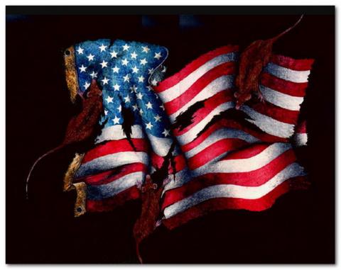Смертельная лихорадка и бред США
