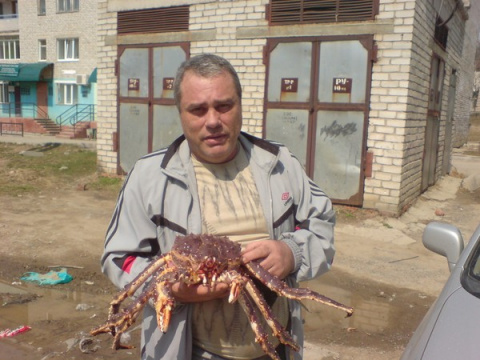 Алексей Негребов