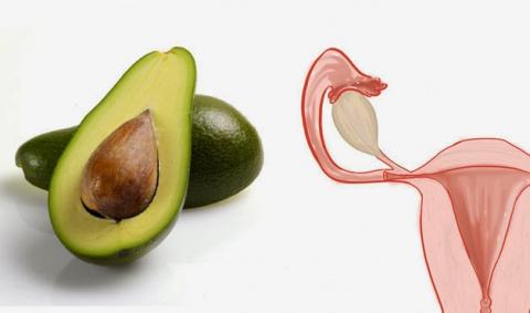 Секрет природы: сходство продуктов и человеческих органов, для которых они полезны