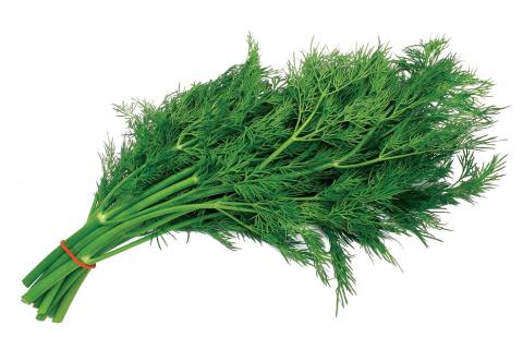 Полезная зелень. Листовые (зелёные) овощи (1)