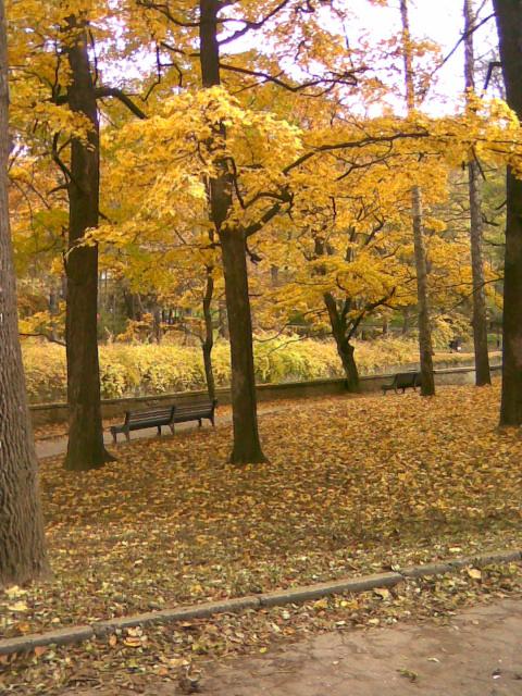 Осень пришла в Кисловодский парк.