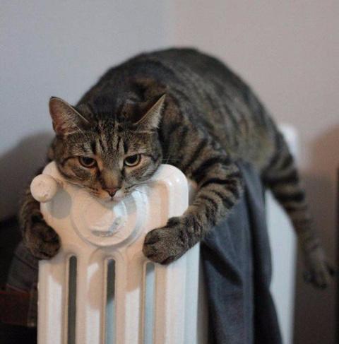 Наступили холода,все мы в по…