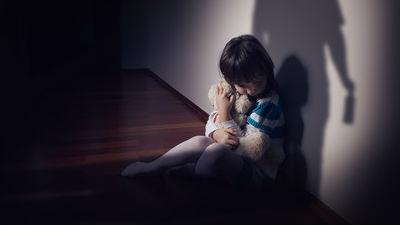 СПЧ попросил Путина поддержать законопроект о профилактике домашнего насилия