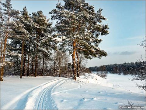 Самая красивая лыжня в Подмосковье